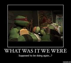 Tmnt Meme - image a meme of mine jpg tmnt wiki fandom powered by wikia