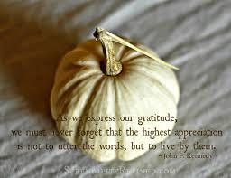 thanksgiving november 2014 serendipity refined blog november 2014