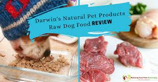 best raw dog food reviews darwin u0027s natural pet products raw dog