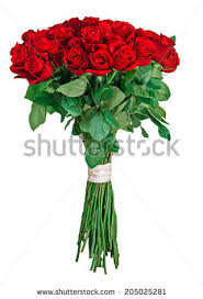 Red Rose Bouquet Red Roses Bouquet Stock Images Royalty Free Images U0026 Vectors