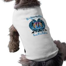 american pitbull terrier t shirts pitbull pet clothing zazzle