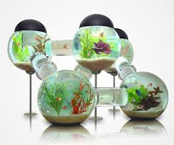 Fish Tank Desk by 22 Unusual And Creative Aquariums Bored Panda