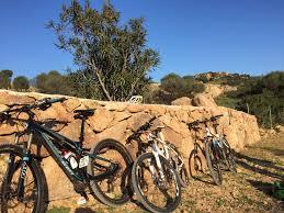 easy tours la tua vacanza in bicicletta