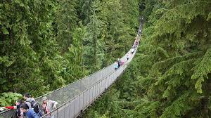 capilano suspension bridge wikipedia