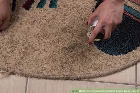 How To Remove Rug Stains 3 Ways To Remove Cat Hairball Stains From Carpet Wikihow