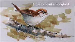 how to paint a bird sparrow demonstration a fun line and wash