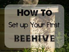 Raising Bees In Backyard by We At Keeping Backyard Bees Encourage Anyone Who U0027s Interested In
