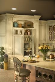 111 best kitchen images on pinterest dream kitchens backsplash