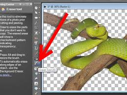 how to remove a background using paint shop pro x3 10 steps