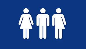 church releases statement on transgender issue mormon hub