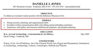 profile sample resume business analyst resume sample writing
