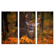 online get cheap wildlife wall murals aliexpress com alibaba group deer in autumn forest canvas art print poster animal wildlife wall murals home decor painting triptych hd picture prints artwork