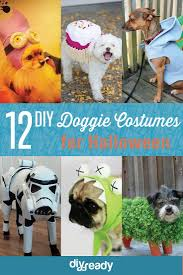 19 best dogs images on pinterest costumes halloween ideas and