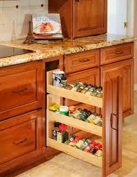 Contemporary Spice Racks Cabinets Enchanting Contemporary Kitchen Kitchen Cabinet Pull Out