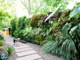 Wall Garden Kits by How To Plant A Living Wall Sunset