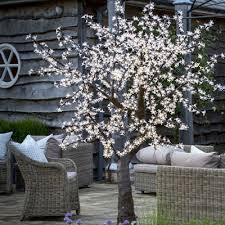 Decorative Trees With Lights Cherry Trees Twilight Trees