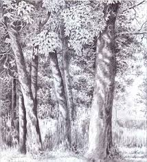 weeping willow tree pen create beautiful pictures joshua nava arts