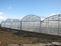 serre horticole en verre serres plastique cmf cultures construction de serres de