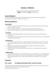 Resume Skills Summary Examples Professional Paper Editor Website For Masters Esl Dissertation