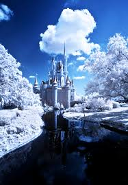 How Long Does Disney Keep Christmas Decorations Up - january 2018 at walt disney world disney tourist blog