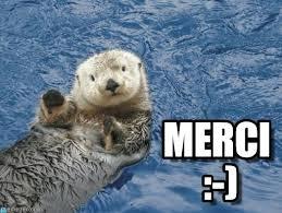 Sea Otter Meme - merci sea otter meme on memegen