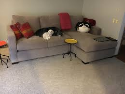 room and board sectional sofa cleanupflorida com