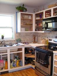 Replacing Kitchen Cabinets Without Removing Countertop Tehranway - Kitchen cabinet without doors