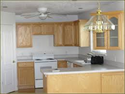 Finishing Kitchen Cabinets Ideas Refinishing Kitchen Cabinets With Gel Stain Home Design Ideas