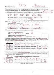 periodic table basics answer key periodic table basics answers science spot answer key within