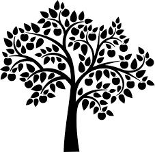 apple tree silhouette 1674395 jpg trees
