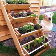 herb garden layout raised bed inspirational vegetable garden