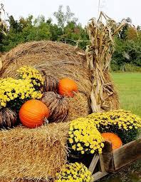 Pinterest Harvest Decorations Best 25 Outside Fall Decorations Ideas On Pinterest Front Porch