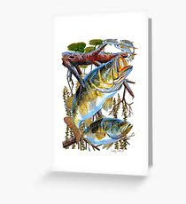 bass fishing greeting cards redbubble