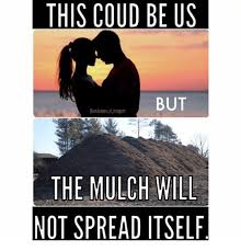 Landscaping Memes - this coud be us but the mulch will not spread itself landscaping