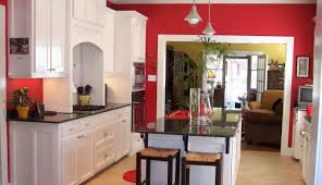 kitchen themes decorating ideas cranerental small bathroom layout cheap kitchen remodeling