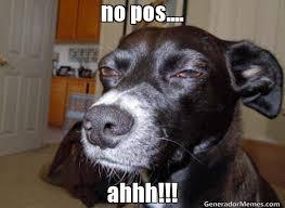 Ahhh Meme - no pos ahhh meme de perro avieso imagenes memes