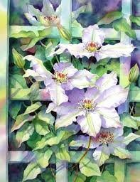 clematis on a trellis u2013 ann mortimer art