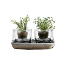 indoor plant pots any green thumb will love 9homes