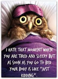 Owl Birthday Meme - is this you once you get to bed no matter how tired you are you