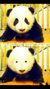 Panda Mascara Meme - panda with no makeup emo makeup