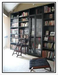Ikea Bookcase With Glass Doors Ikea Glass Door Bookcase Astounding Bookcase With Doors Bookcase