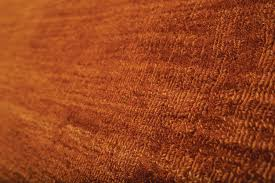 Rust Area Rug Burnt Orange Rust Wool Area Rug Woodwaves