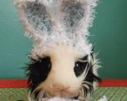 Ferret Costumes Halloween Guinea Pig Ferret Easter Bunny Ears Hat Guinea Pig