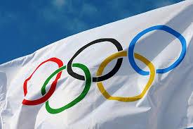 The Flag Of Brazil 10 Arrested In Brazil Olympics Terror Plot Upi Com