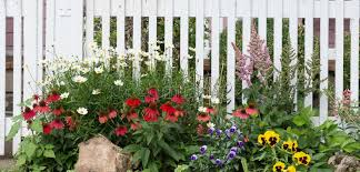 old fashioned garden fence stock photo image of flower 44043240
