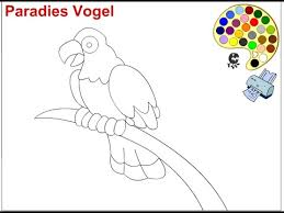 parrot coloring pages for kids parrot coloring pages youtube
