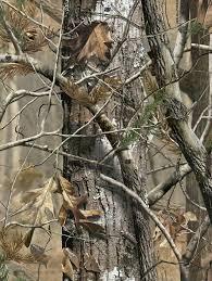 25 real tree camouflage ideas on camo nursery