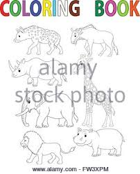 cartoon funny lion coloring book isolated white background