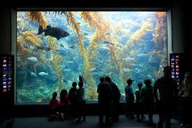 Hours by Hours Birch Aquarium At Scripps