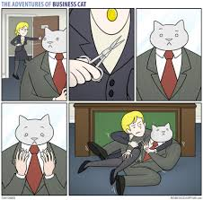 Business Cat Memes - the adventures of business cat meme by the cat1 memedroid